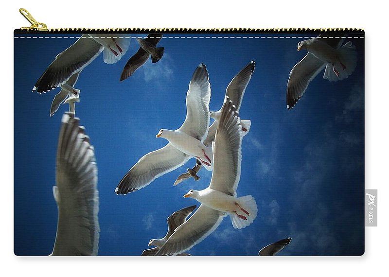 Seagulls Carry-all Pouch featuring the photograph Seagulls Above by John McManus