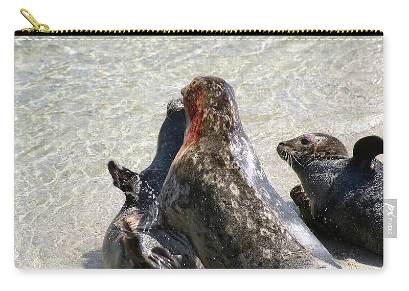 Seals Carry-all Pouch featuring the photograph Seal Fight by Anthony Jones