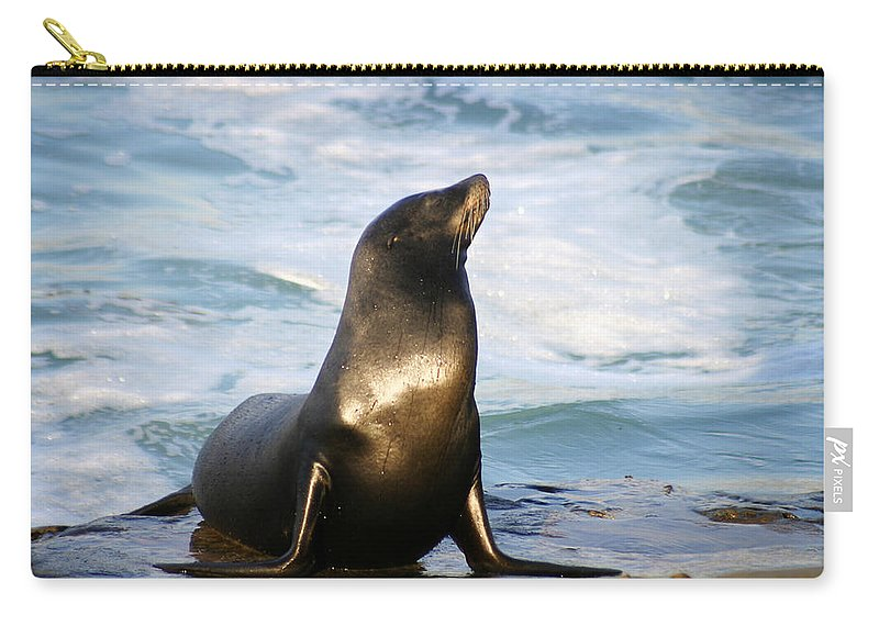 Sealion Carry-all Pouch featuring the photograph Sealion by Anthony Jones