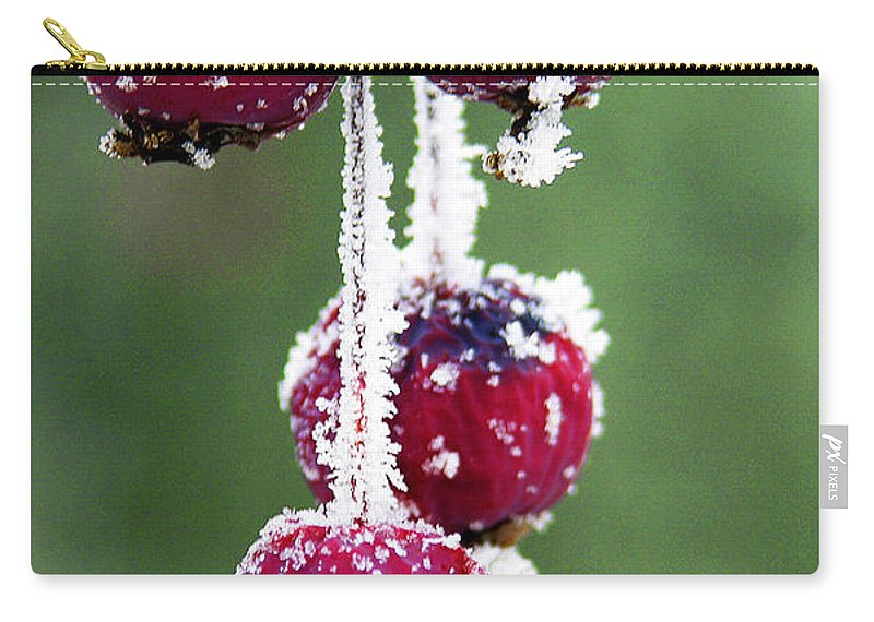 Berries Carry-all Pouch featuring the photograph Seasonal Colors by Marilyn Hunt
