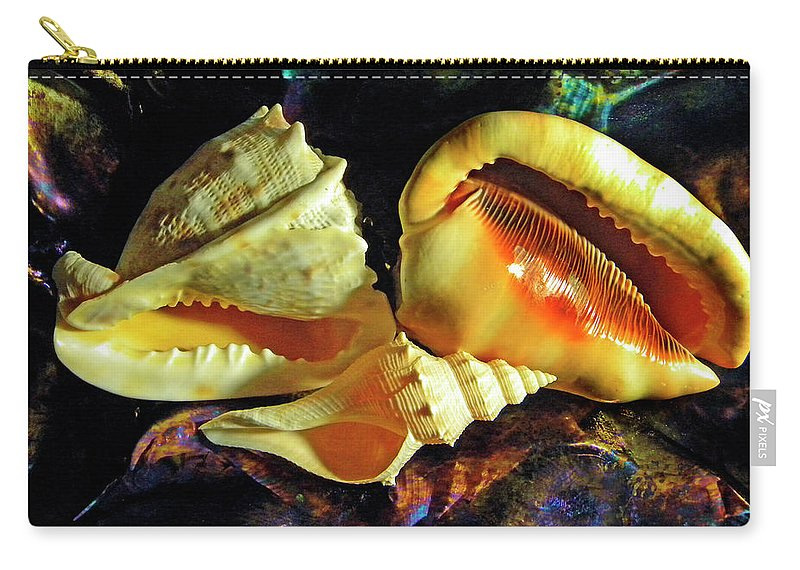 Frank Wilson Carry-all Pouch featuring the photograph Seashells by Frank Wilson