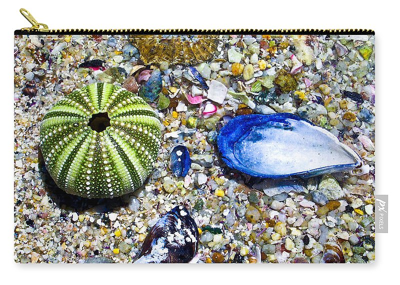 Seashore Carry-all Pouch featuring the photograph Seashore colors by Douglas Barnett
