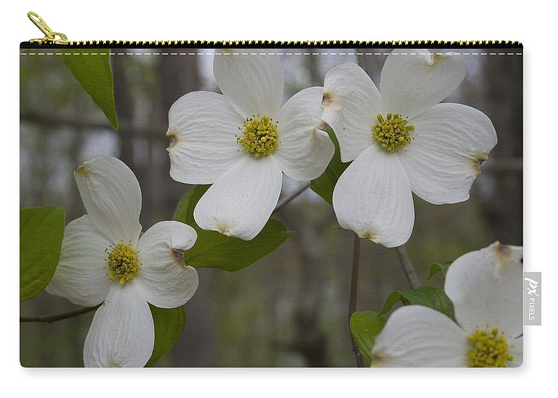 Flower Carry-all Pouch featuring the photograph Season Of Dogwood by Andrei Shliakhau