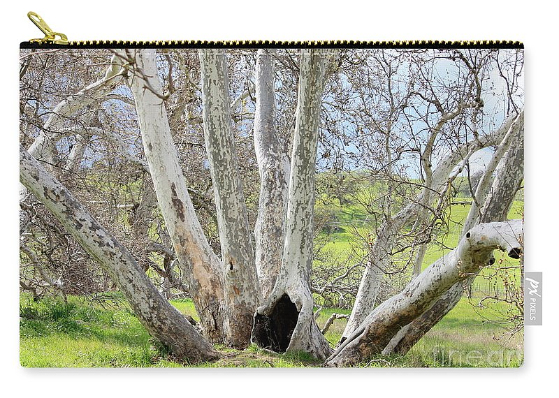 Tree Carry-all Pouch featuring the photograph Secret Passageway by Carol Groenen