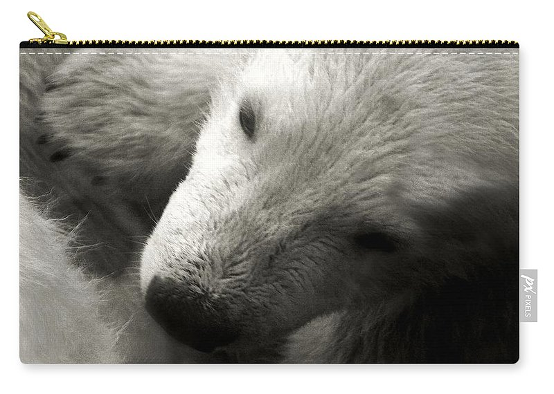 Polar Bear Carry-all Pouch featuring the photograph Security Blanket by RC DeWinter