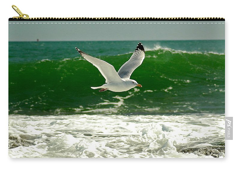 Sea Gull Carry-all Pouch featuring the photograph See Gull by Greg Fortier