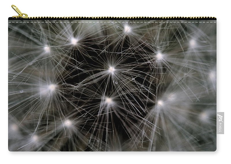 Dandelion Carry-all Pouch featuring the photograph Seedy by Angela Rath
