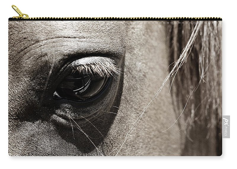 Americana Carry-all Pouch featuring the photograph Stillness in the Eye of a Horse by Marilyn Hunt