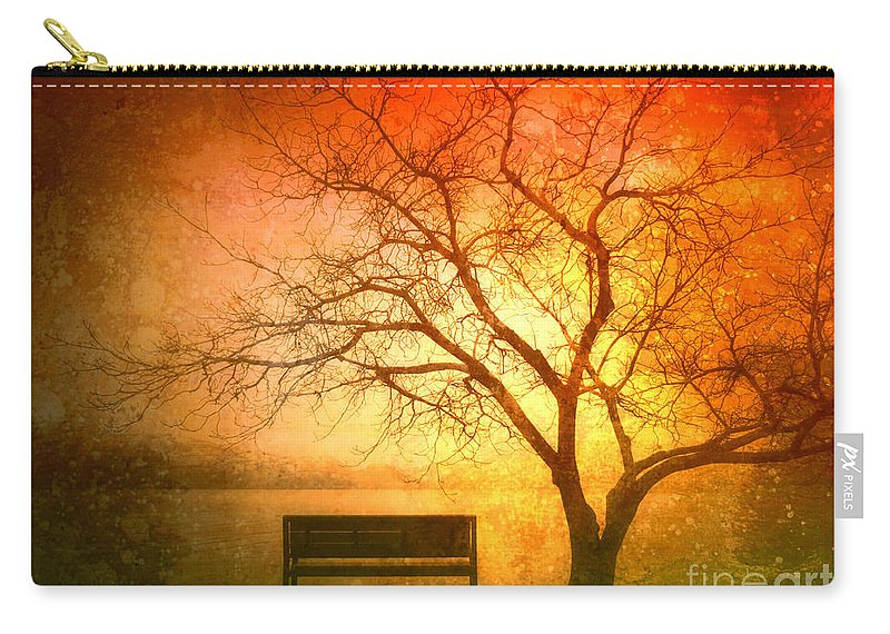 Bench Carry-all Pouch featuring the photograph Seeking Shelter by Tara Turner