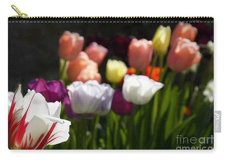 Wendy Carry-all Pouch featuring the photograph Seriously Colourful by Wendy Wilton