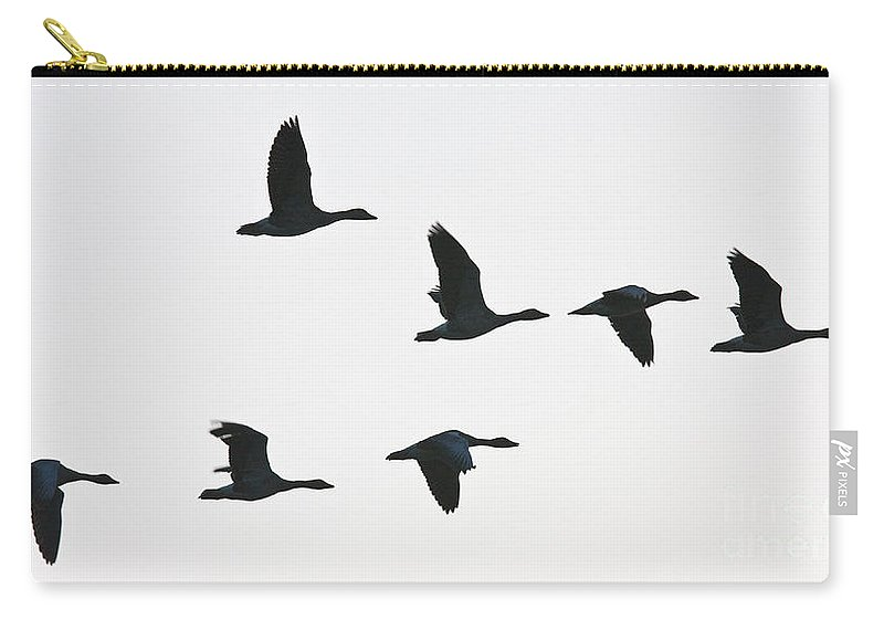 Geese Carry-all Pouch featuring the photograph Sevenfold Geese by Casper Cammeraat