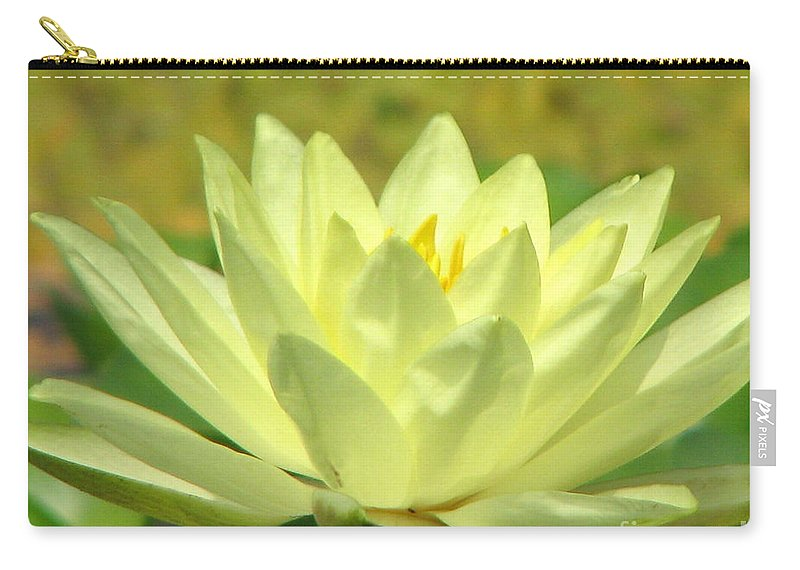 Lillypad Carry-all Pouch featuring the photograph Shades by Amanda Barcon