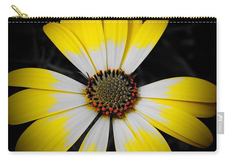 Chicago Botanic Garden Carry-all Pouch featuring the photograph Shadow Around Crown by Tim G Ross