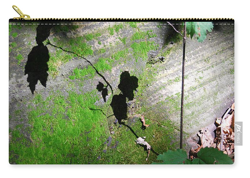 Shadows Carry-all Pouch featuring the photograph Shadow Play by Trish Hale