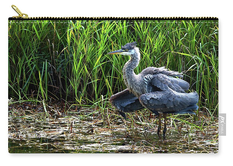 Great Blue Heron Carry-all Pouch featuring the photograph Shake It by Sharon Talson