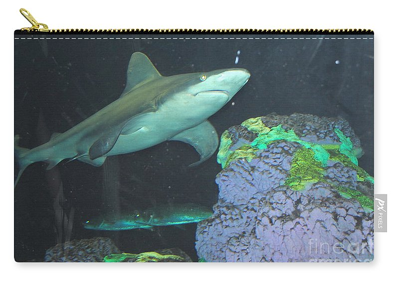 Shark Carry-all Pouch featuring the photograph Shark by Jost Houk