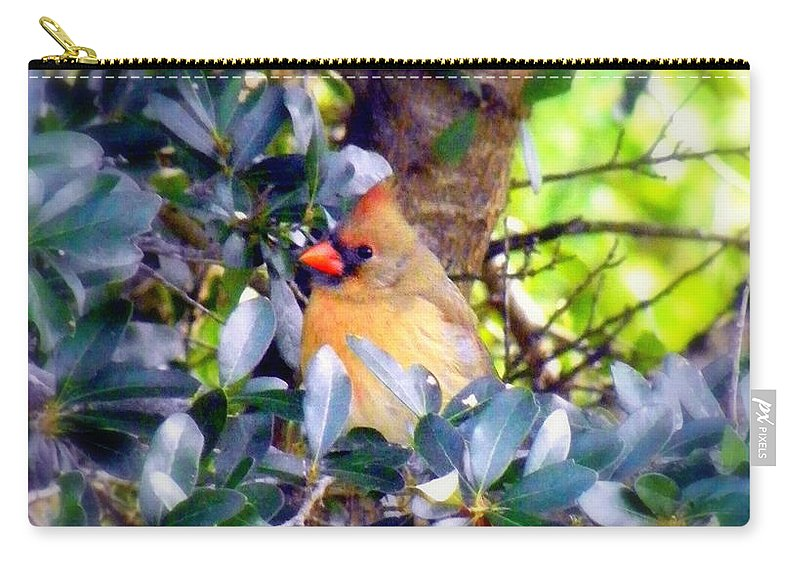 Cardinal Carry-all Pouch featuring the photograph She Waits by Karen Wiles