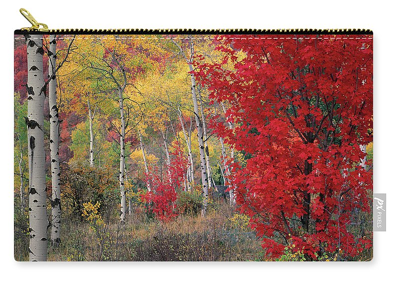 Idaho Scenics Carry-all Pouch featuring the photograph Sheep Canyon In Autumn by Leland D Howard