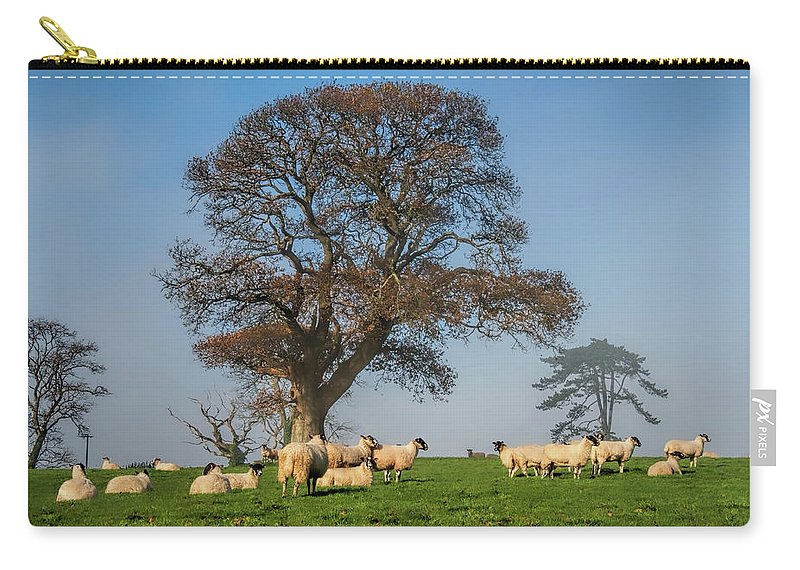 Sheep Carry-all Pouch featuring the photograph Sheep In Somerset by Susie Peek