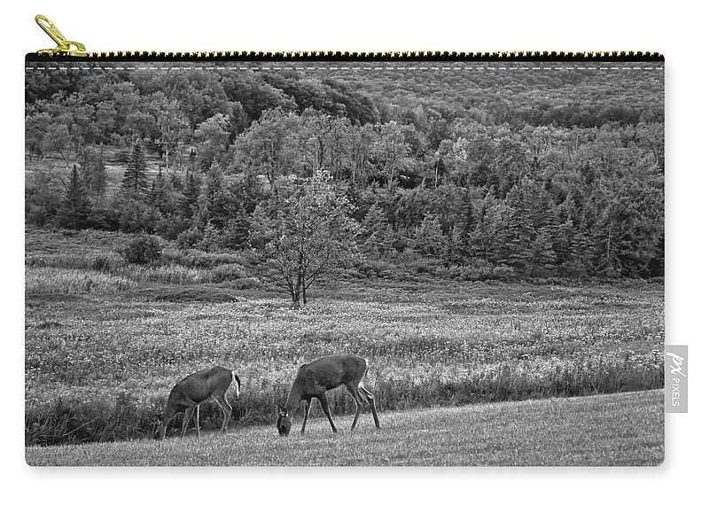 Canaan Valley Carry-all Pouch featuring the photograph Shh... Bw by Steve Harrington