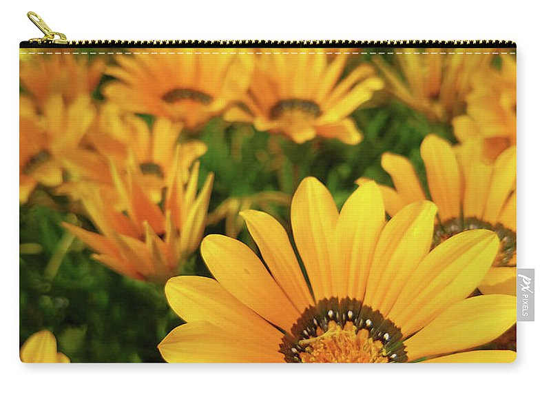 Flower Carry-all Pouch featuring the photograph Shine Brighter Together by Olivia Mack
