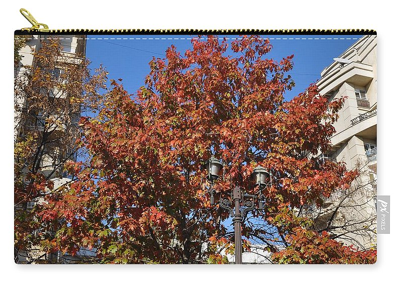 Oak Tree In Autumn Carry-all Pouch featuring the photograph Shining In City by Georgeta Blanaru