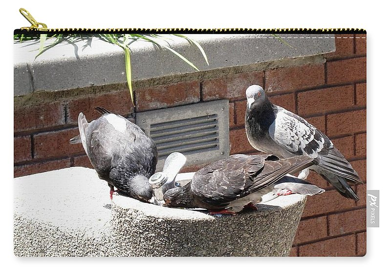 Pigeons Carry-all Pouch featuring the photograph Shooo by Ian MacDonald