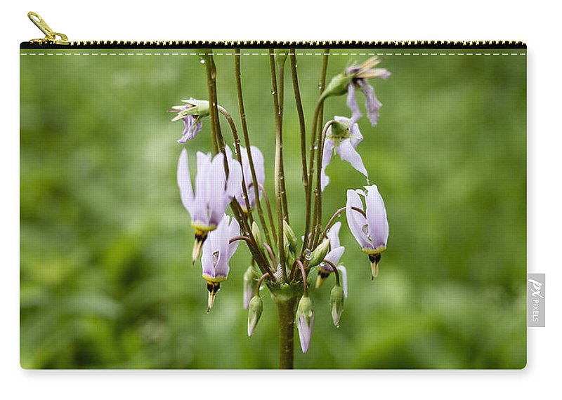 Flowers Carry-all Pouch featuring the photograph Shooting Star Flower - Wisconsin by Steven Ralser