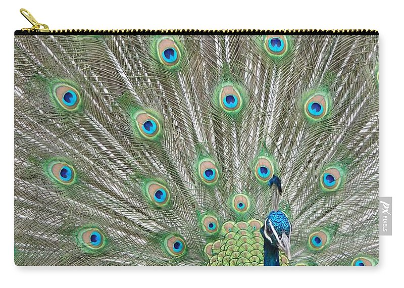 Peacock Carry-all Pouch featuring the photograph Showing Off by Margaret Bobb