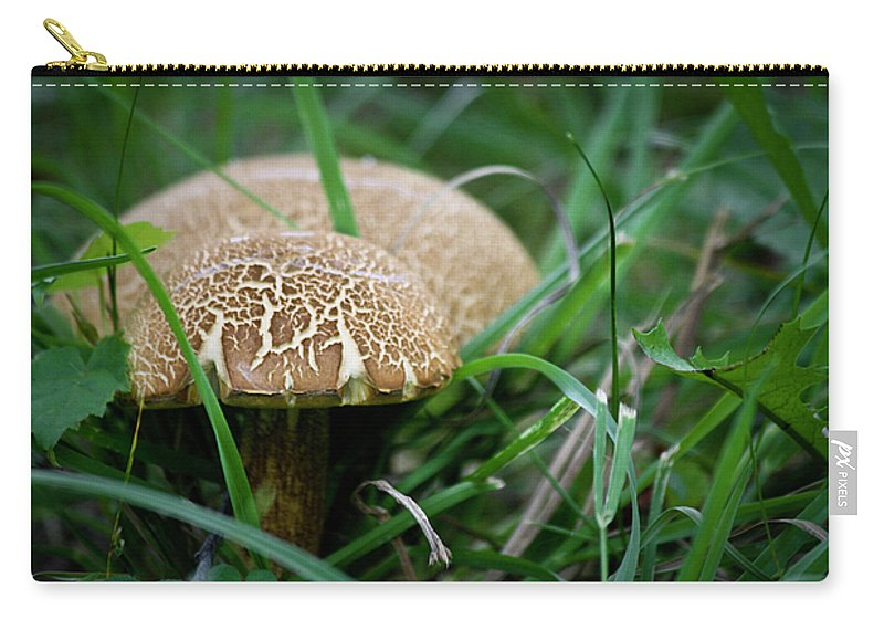 Fungus Carry-all Pouch featuring the photograph Shrooms Hiding by Teresa Mucha