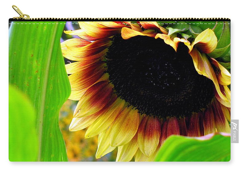 Sun Flower Carry-all Pouch featuring the photograph Shy by Deborah Crew-Johnson