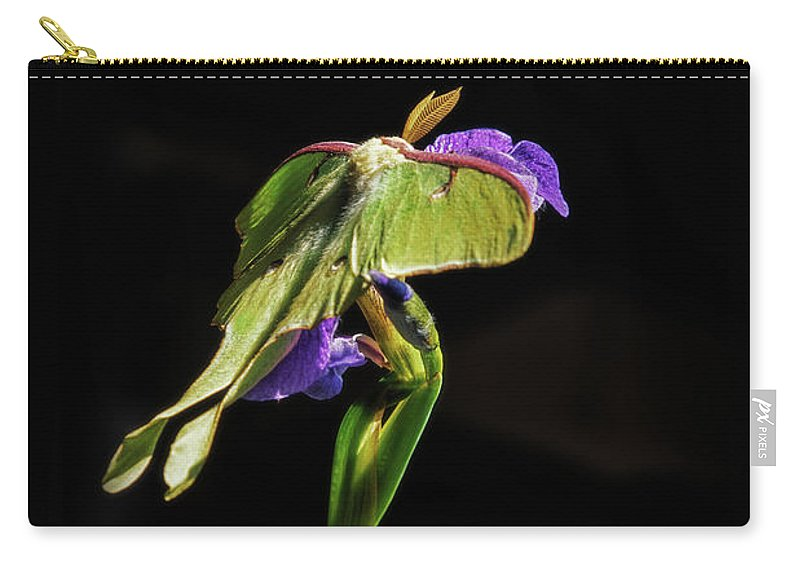 Luna Moth Carry-all Pouch featuring the photograph Siberian Iris And Luna Moth by Susan Capuano
