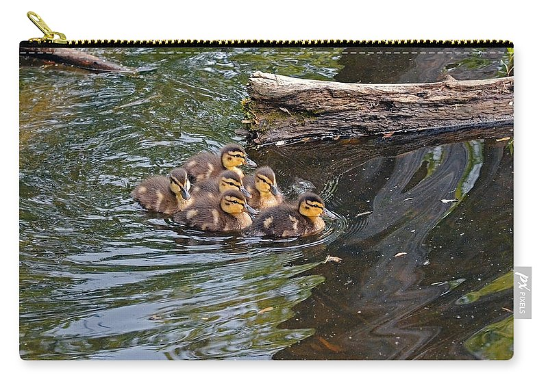 Duck Carry-all Pouch featuring the photograph Siblings by Asbed Iskedjian