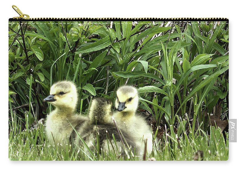 Goose Carry-all Pouch featuring the digital art Siblings by Leslie Montgomery