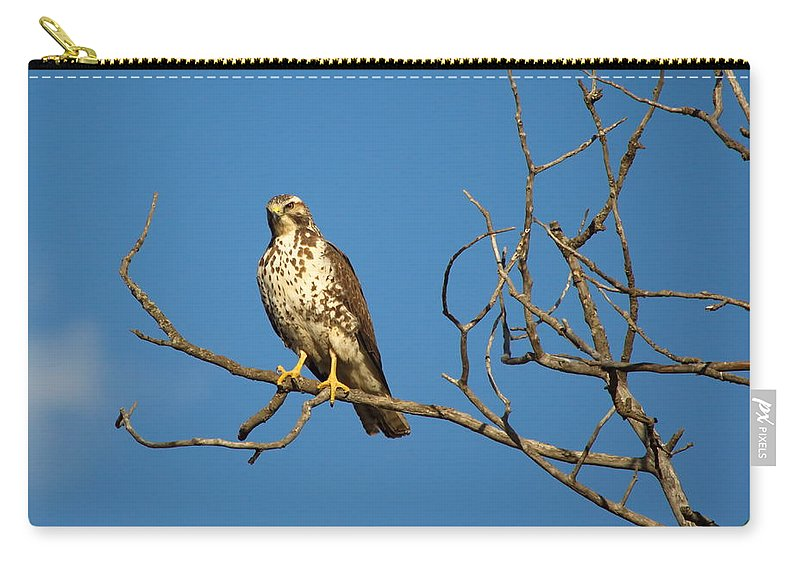 Nature Carry-all Pouch featuring the photograph Sideways Glance by Crystal Massop