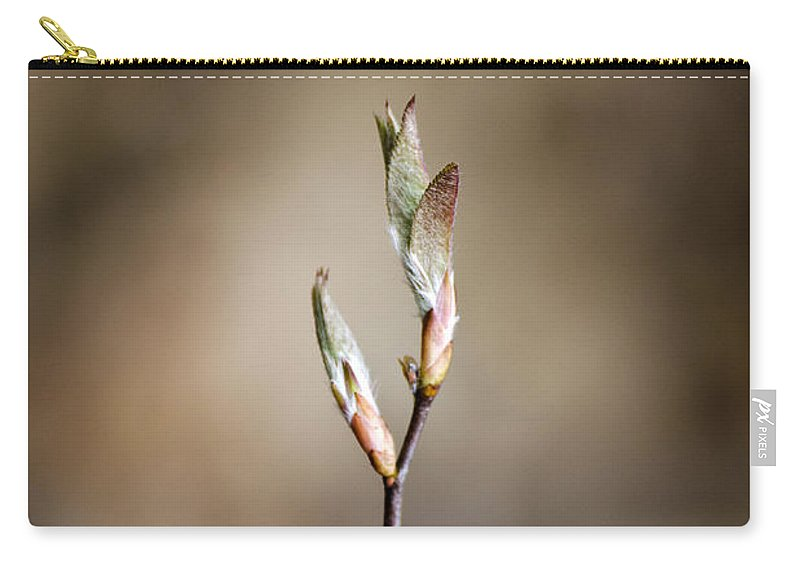 Sienna Carry-all Pouch featuring the photograph Sienna Brown by Christina Rollo