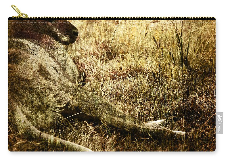 Cangaroo Carry-all Pouch featuring the photograph Siesta by Angel Ciesniarska