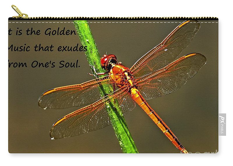 Dragonfly Carry-all Pouch featuring the photograph Silence by Lisa Renee Ludlum