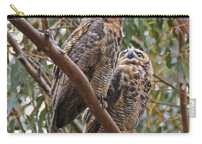 Owl Carry-all Pouch featuring the photograph Silent Conversation by Craig Corwin