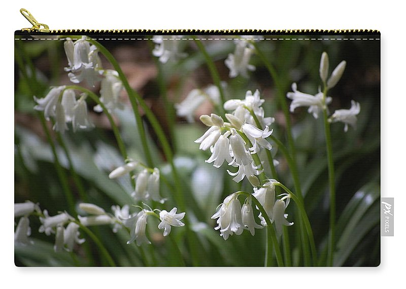 Landscape Carry-all Pouch featuring the photograph Silver Bells by David Lane