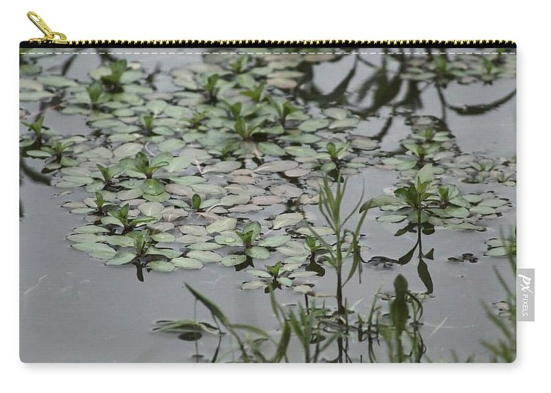 Landscape Carry-all Pouch featuring the photograph Silver Coins by Suzette Munson