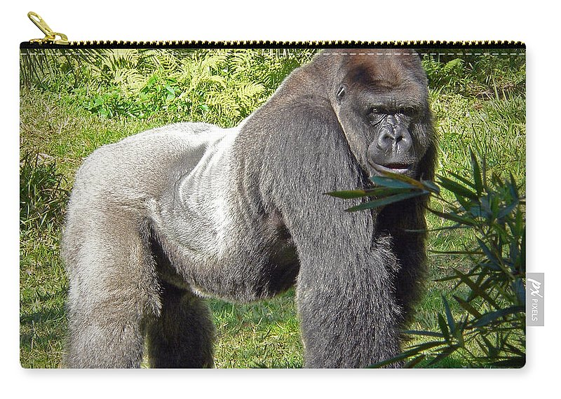 Silverback Carry-all Pouch featuring the photograph Silverback by Steven Sparks