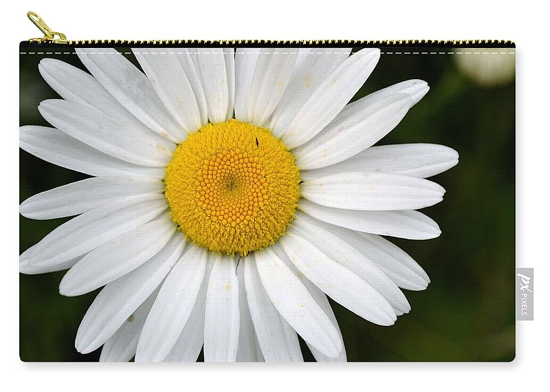 Flower Carry-all Pouch featuring the photograph Simple Daisy by Robin White