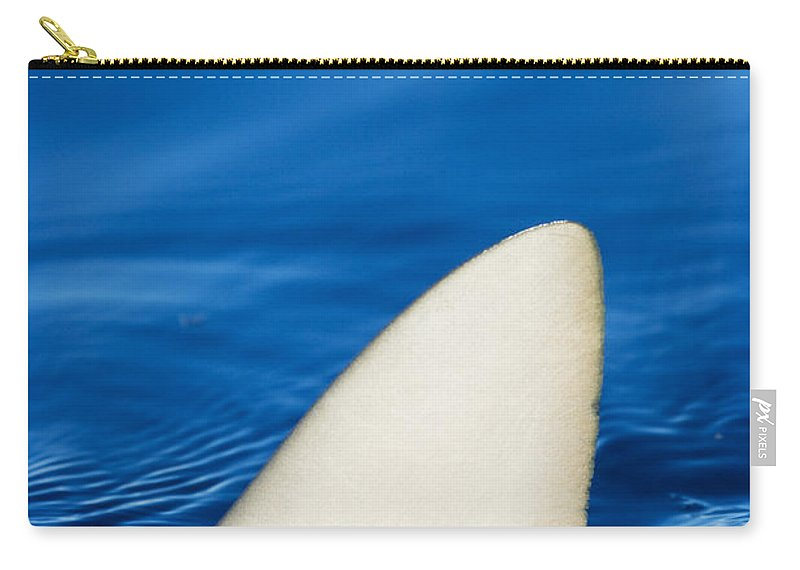 Abstract Carry-all Pouch featuring the photograph Simple Shark Fin by Dave Fleetham - Printscapes
