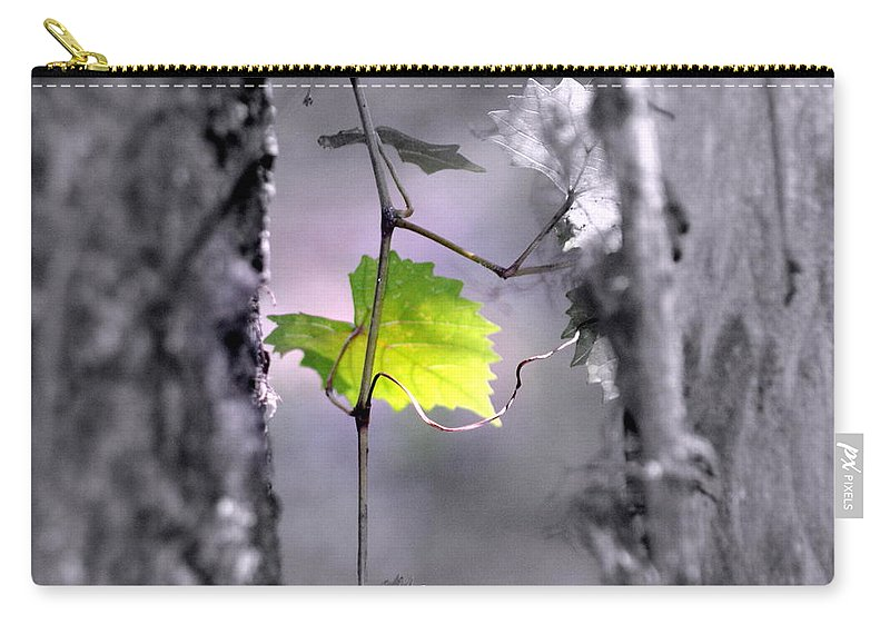 Tree Carry-all Pouch featuring the photograph Simplicity by Jennifer Diaz