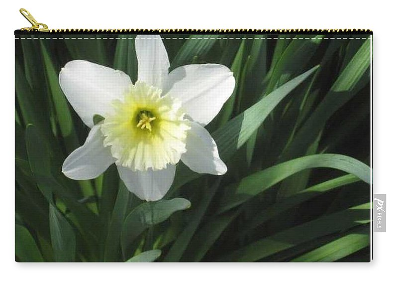 Spring Carry-all Pouch featuring the photograph Single Daffodil by Paula Laschenski SNDdeN