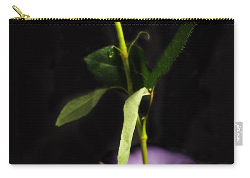Vase Carry-all Pouch featuring the photograph Single Red Rose In Vase by Wesley Farnsworth