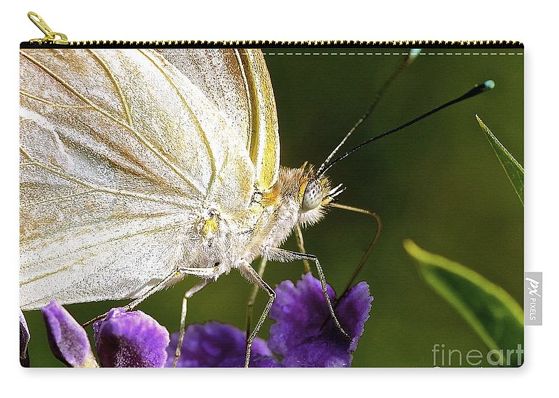 Sulfur Butterfly Carry-all Pouch featuring the photograph Sipping Purple by Lisa Renee Ludlum