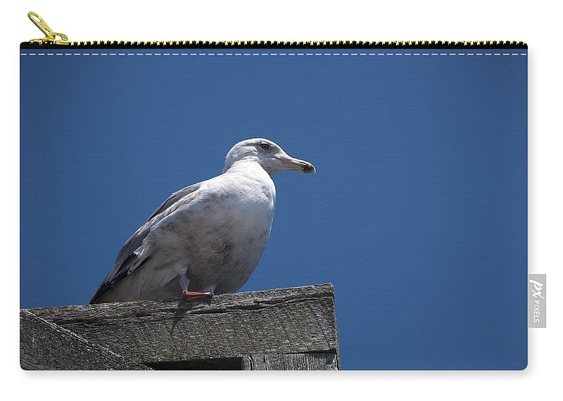 Dock Carry-all Pouch featuring the photograph Sitting By The Dock Of The Bay by Steven Natanson