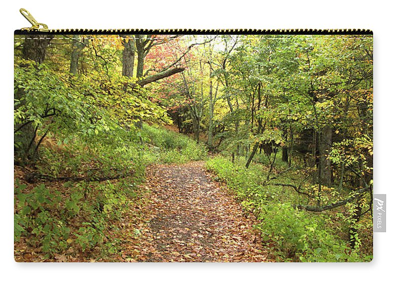 Skylands Trail Carry-all Pouch featuring the photograph Skyline Trail P by Robert McCulloch